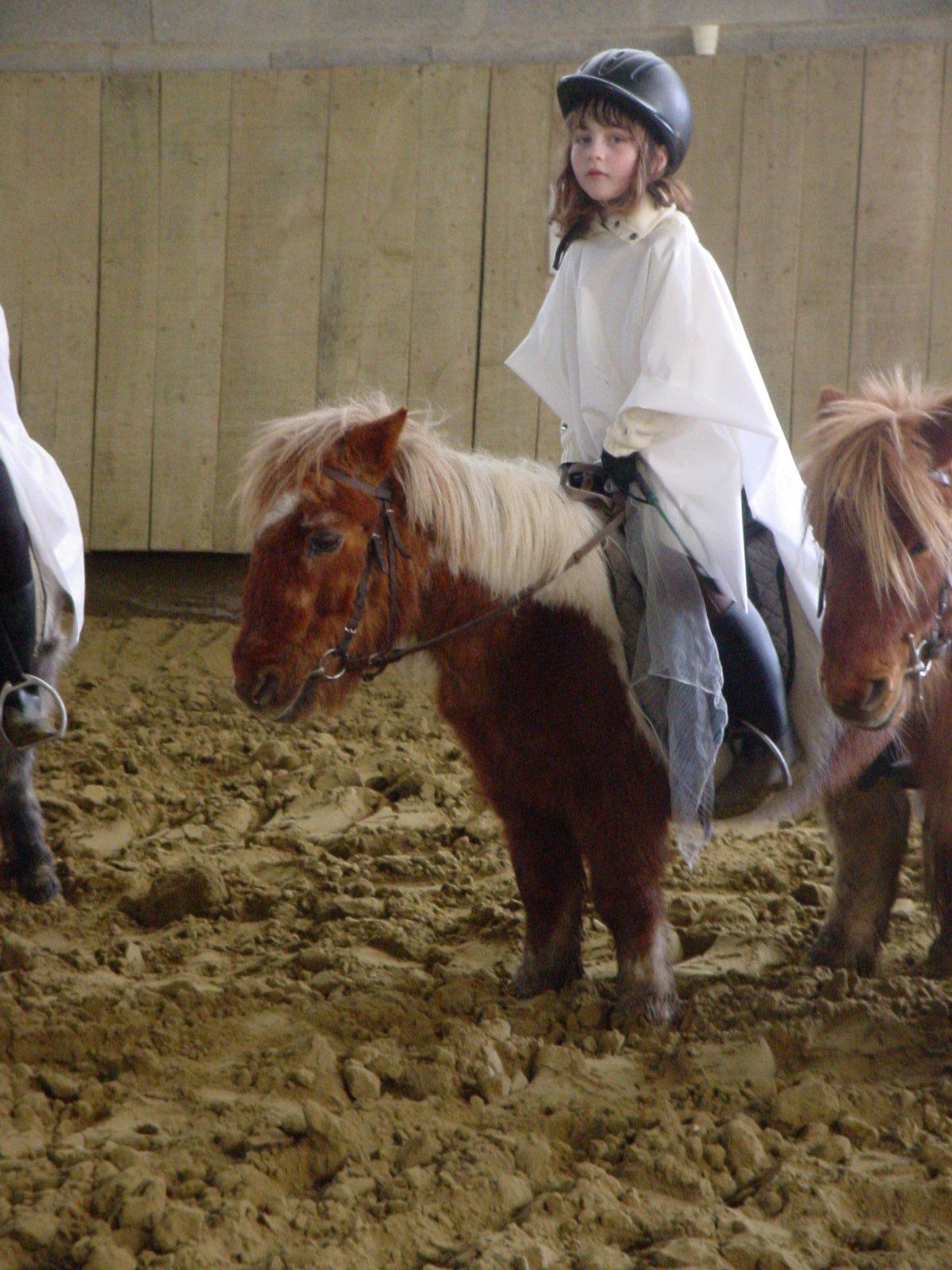quintia sur poney