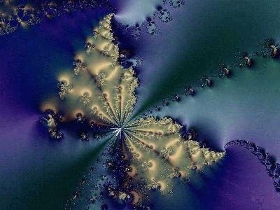 image fractale