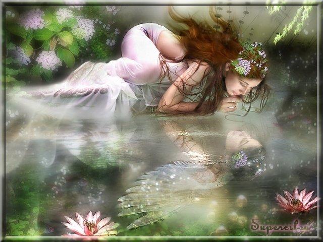 reflet d'ange