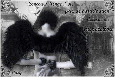prix de participation concours ange noir