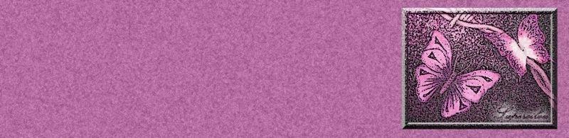 papillonrose2web.jpg