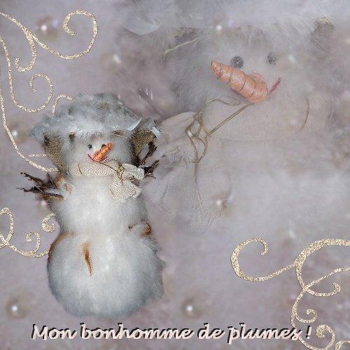 mon bonhomme de neige en plumes
