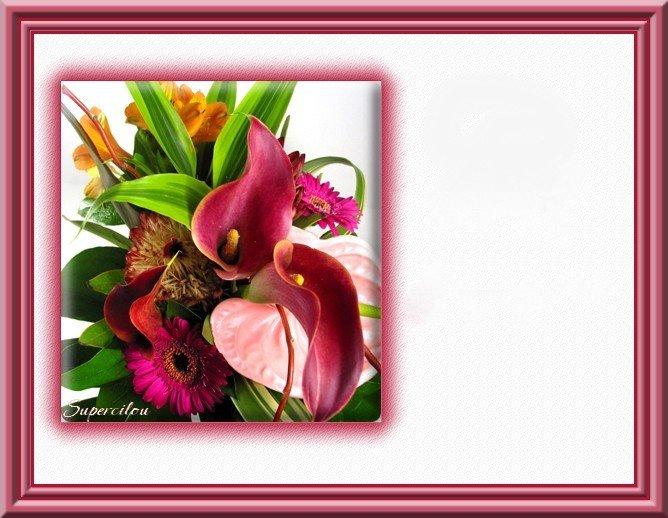 carte fleurs exotiques roses