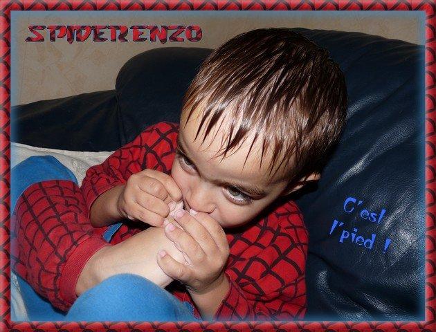 spiderenzo.jpg