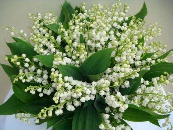 bouquetmuguet34614605b.jpg