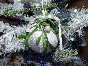 Bonne Année 2013 ! dans Mes créations et animations bonne-annee-2013-300x225