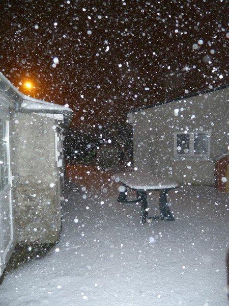 Il neige ! dans vie quotidienne il-neige1